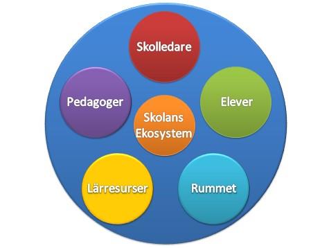 Skolans ekosystem